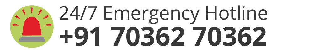 247-green